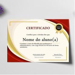 Certificado A4 Vergê Branco 220gr 4x1 cores