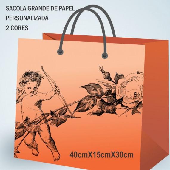 Sacola Papel 40cmx30cm PERSONALIZADA - 2 CORES- 100 un.